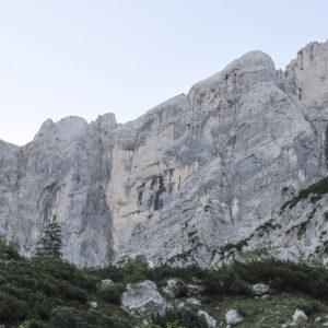 Felswand im Gesäuse NAtionalpark