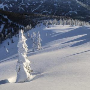 Skigenuss auf Skitouren im Gesäuse mit Bergführer