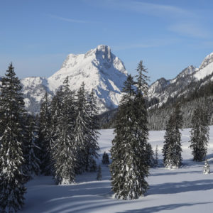 Skitouren im Gesäuse mit Bergführer