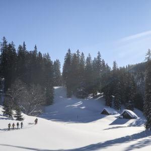 Einsteiger-Skitouren im Gesäuse mit Bergführer