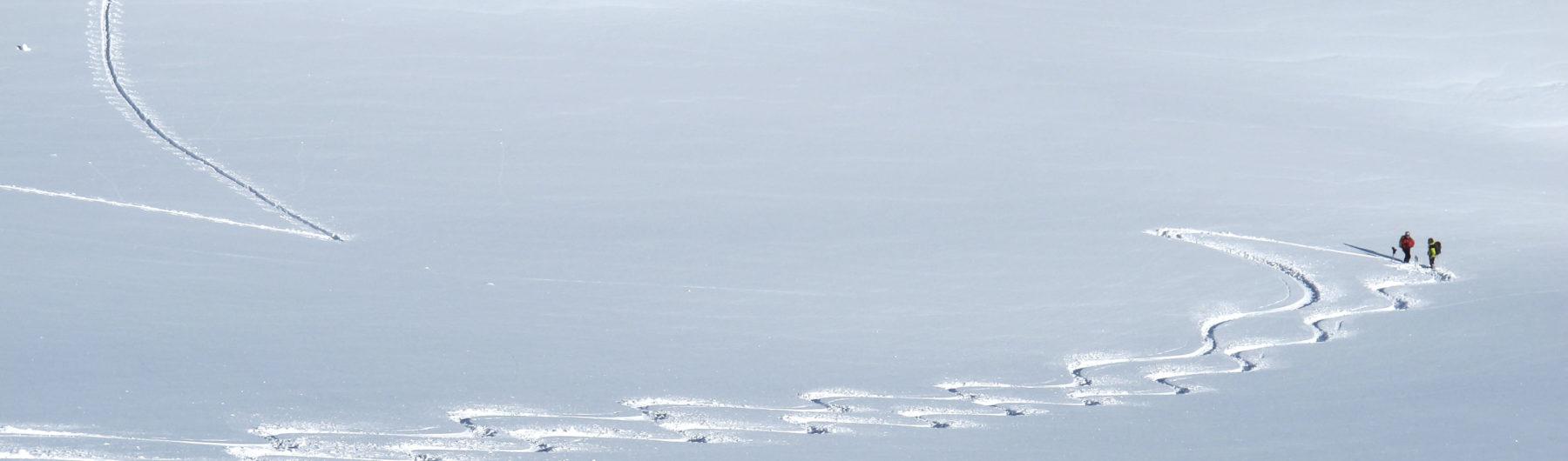Skitourenspur im unverspurten Pulverschnee