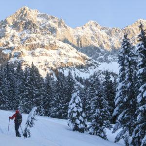Einsteiger-Skitouren am Dachstein mit Bergführer - Bachlalm