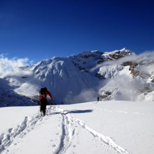 Skitourengeher mit Bergführer. Im Hintergrund der Obernberger Tribulaun.